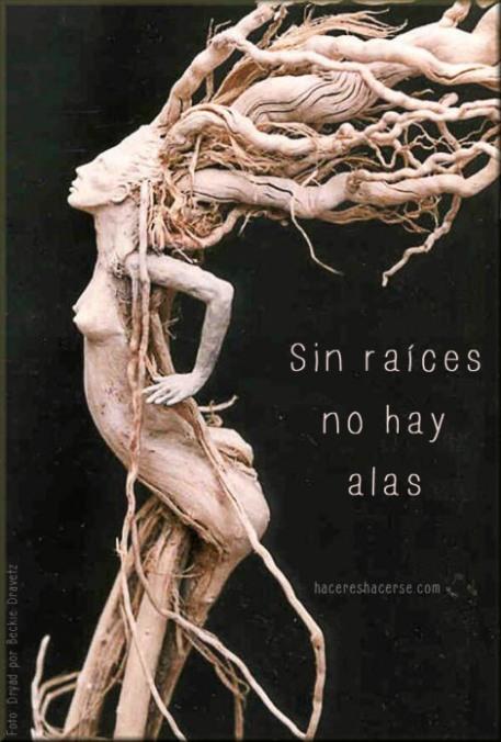 sin-raices-no-hay-alas-dryad-by-beckie-kravetz1