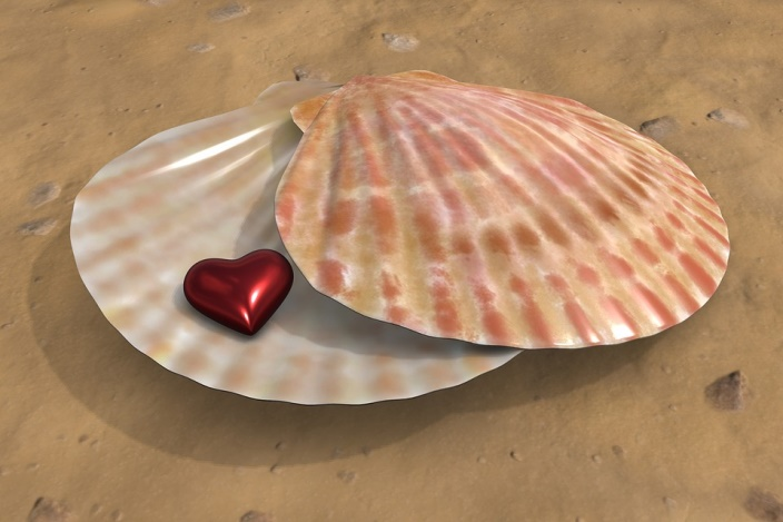 corazón y pechina