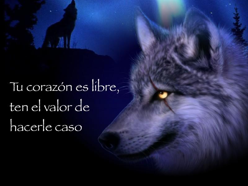 Fondo lobos 2